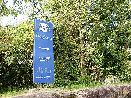 舞鶴若狭自動車道西紀SAを散策&ドックラン施設