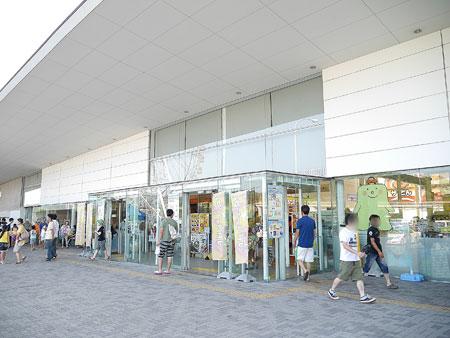 徳島県三好市,いけだ阿波踊り,行ってきました,淡路サービスエリア