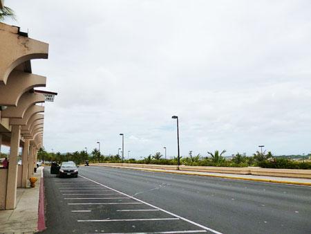 グアム国際航空 カラバオ像 写真